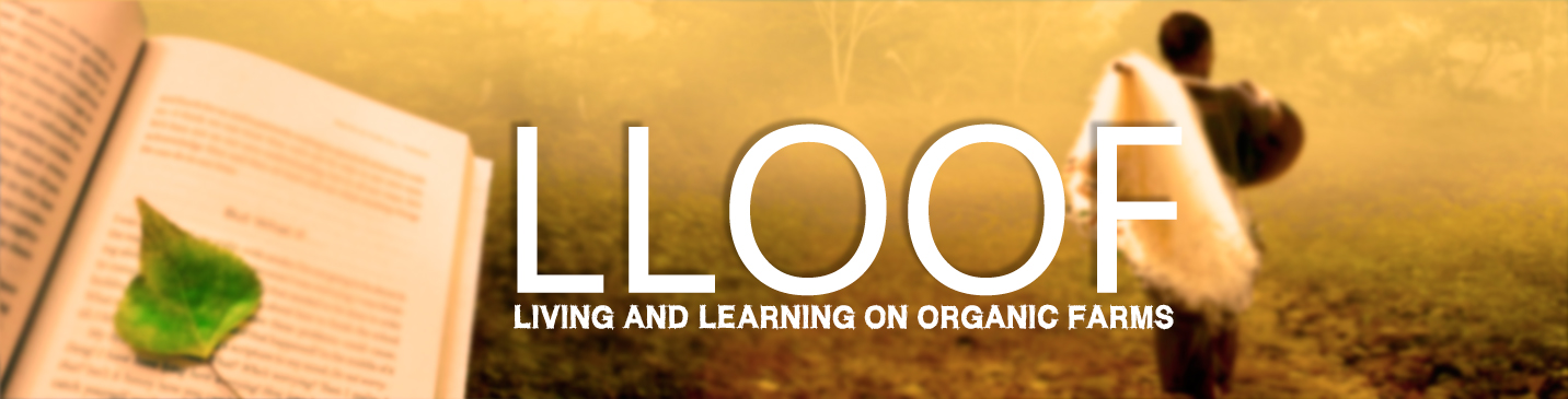 WELCOME TO LLOOF e-learning PLATFORM